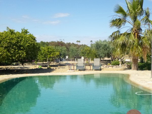 Beautiful Pool at Finca Arboleda