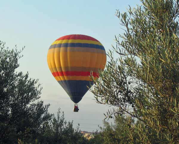 Balloon over our Olive trees